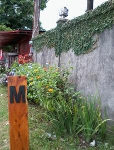 M-gate